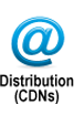 Professional Online Video Distribution (CDNs)